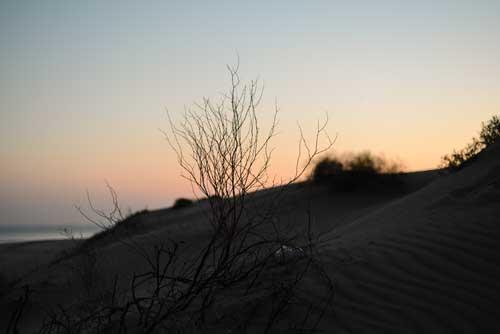 Trek dans le désert la nuit