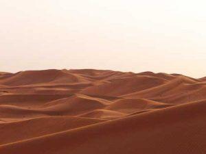 trek-desert