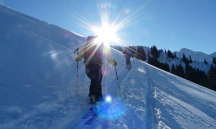 peaux de phoque de ski de randonnée
