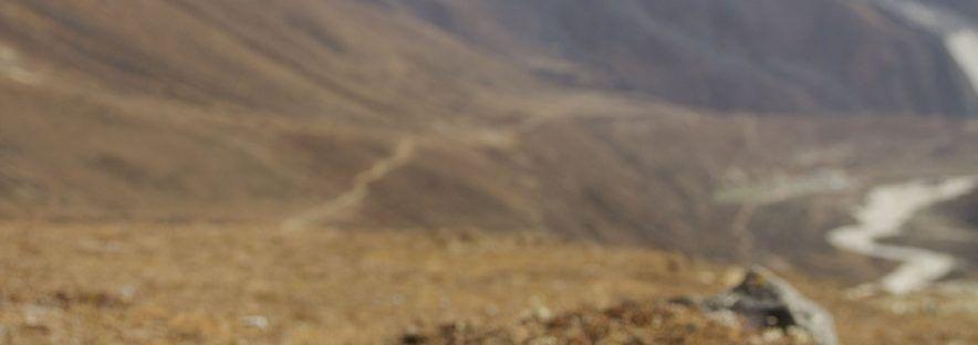 Récupération après une randonnée : les points essentiels