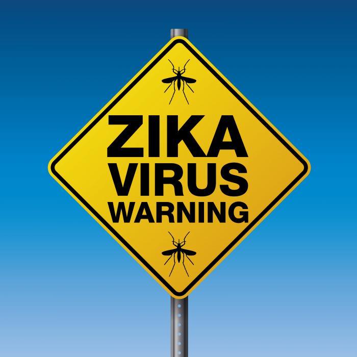 virus zika en voyage