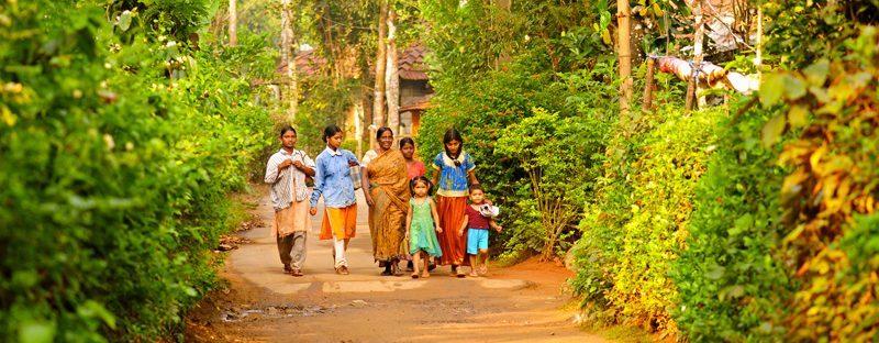 5 idées de treks en Inde du Sud : magie d'un pays unique !