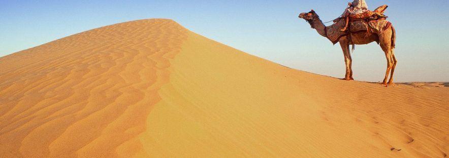Quels vêtements pour femme dans le désert ?
