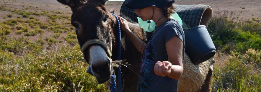 Randonner en famille avec un âne : excellente idée pour voyager avec ses enfants !