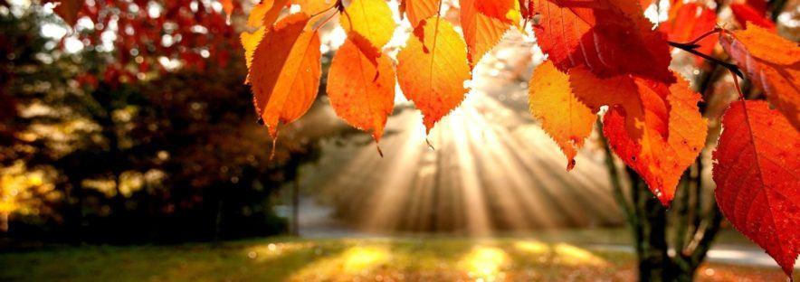 Softshell, le couteau-suisse pour les randos d'automne