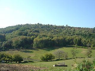 marche nordique au Mont Gargan