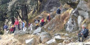 la vallée de Kangra en Himalaya