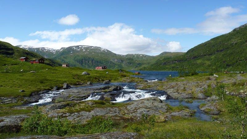 vue-fjord