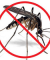comment se protéger contre les moustiques