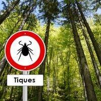 maladie de Lyme en randonnée