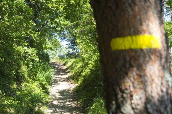 randonnée eco responsable rester sur les chemins